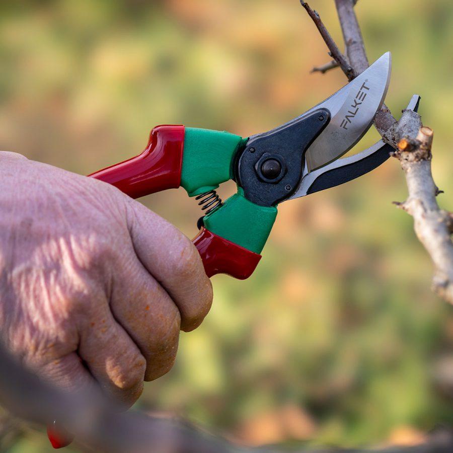 Grape scissors Falket